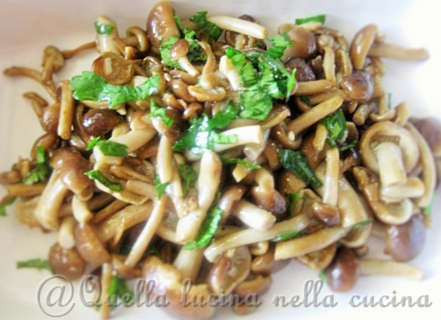 chiodini trifolati Mushroms
