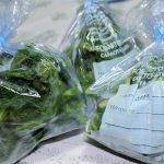 Congelare verdure
